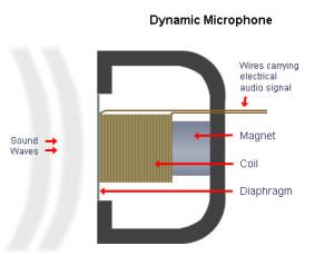 Mikrofon-Dinamik