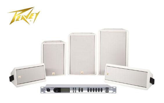 Speaker Sound System Peavey SSE